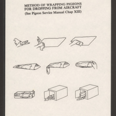 Method of Wrapping Pigeons for Dropping from Aircraft