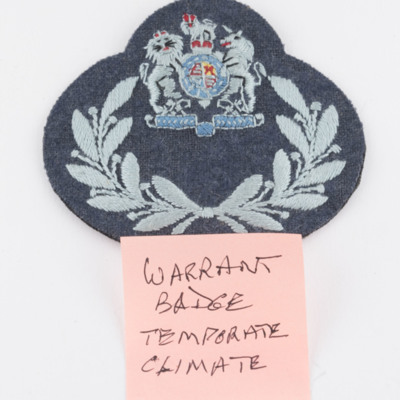 RAF Cloth Badges