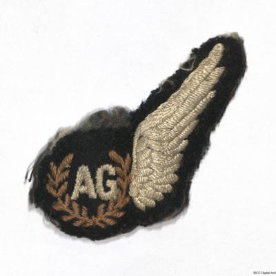 Air gunners brevet