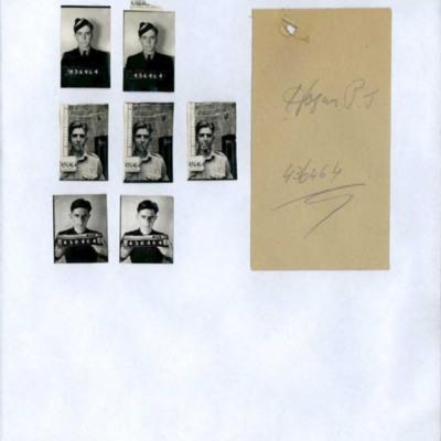 P J Hogan. Thumbnail photographs