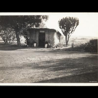 Africa hut