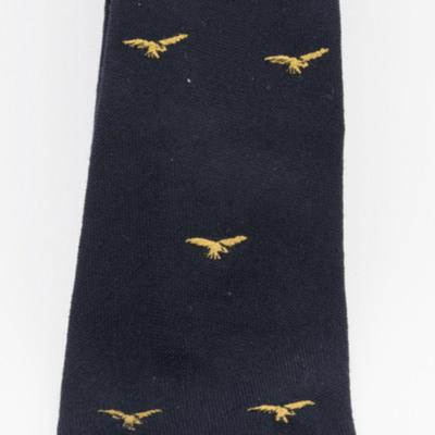 Pathfinder Club Tie